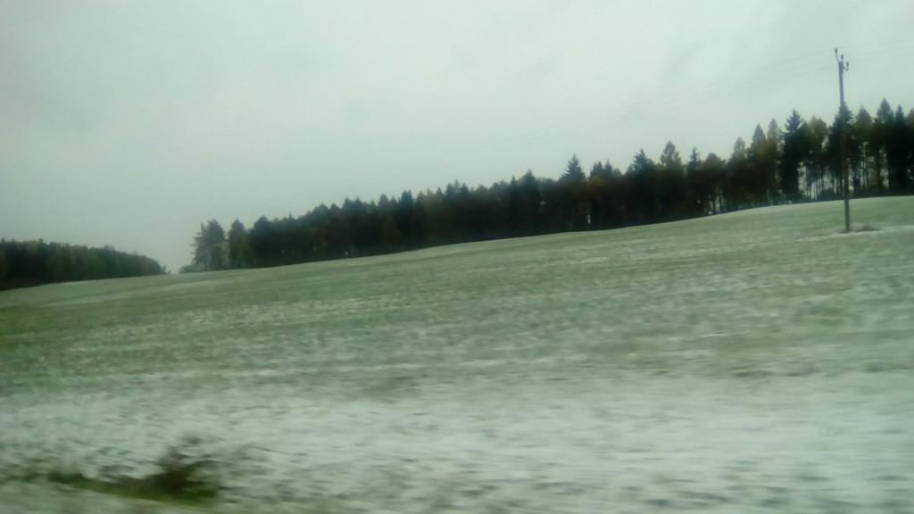 Schnee in der Oberpfalz/Ostbayern, 12. November 2016 (bei Autofahrt als Beifahrer aufgenommen)